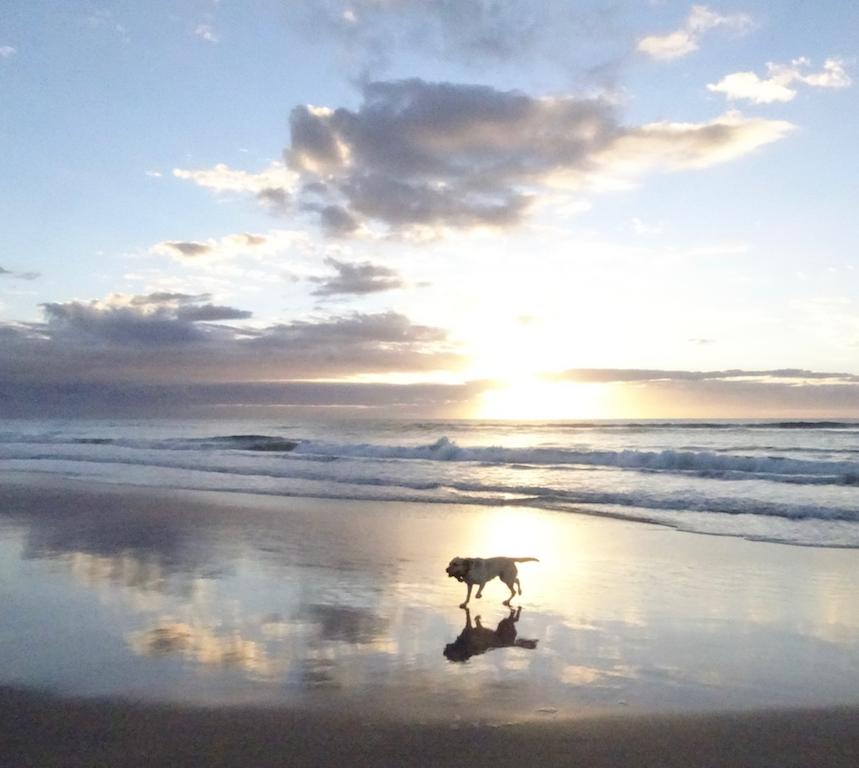 Zena Marcus Beach