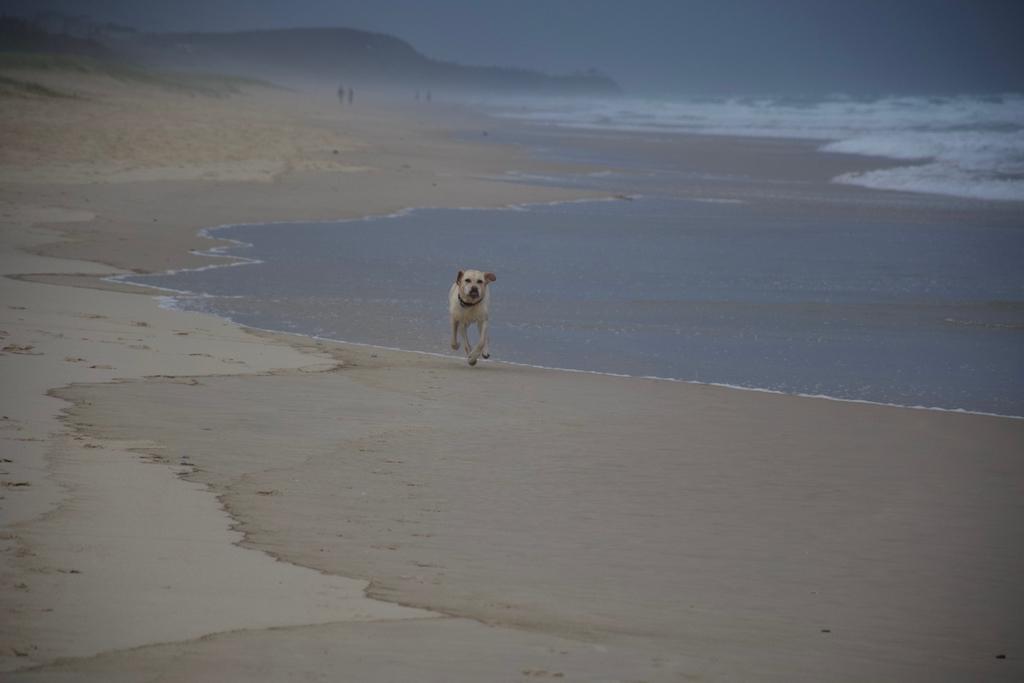 marcus beach day 7 copy